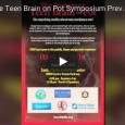 ImmatureBrainOnPotSymposium-PreviewVideo-Thumb