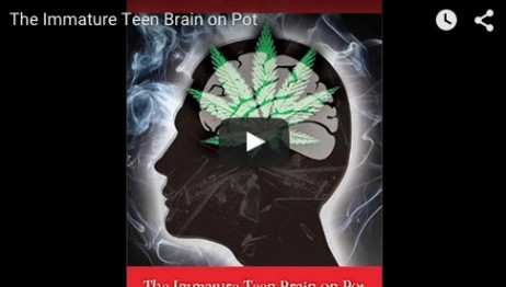 The Immature Teen Brain on Pot Symposium – Full Video